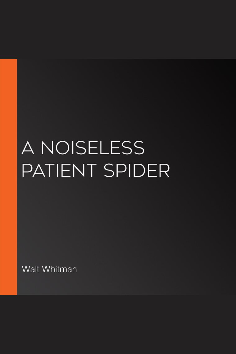 a noiseless patient spider line by line analysis