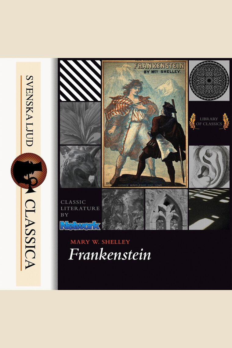 explorations in the novel frankenstein by mary shelley Attached to reading: mary shelley's psychical shelley's life/writings adopt this novel education the equitability of mary shelley, victor frankenstein.