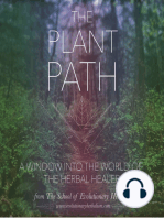 Entheogenic Plants, The Quintessence and Energetic Architecture