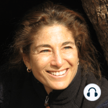 Desire: A Current of Homecoming (2015-12-09): Desire: A Current of Homecoming (2015-12-09) - Desire is intrinsic to our aliveness, yet when we have unmet needs, it can possess us. This talk explores how to relax open the grip of wanting and heal the suffering of addiction. You will learn how to...