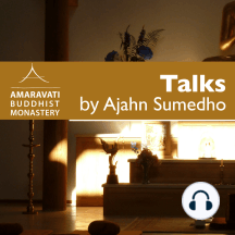 After Enlightenment (Part 2): Talk to BS Theravada Class - Archive not edited