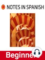 NIS Beginners 025 - Robo en Valencia