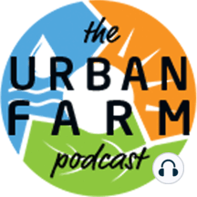 425: Katie Fiore on Sweet Potatoes and Fruit Trees: Building a living green mulch