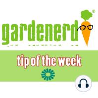 Got Grubs?: This Week's Tip Of The Week reviews different varieties of garden grubs.