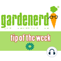 Pre Spring Cleaning: The Gardenerd.com Tip of the Week for January 21, 2011