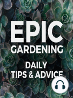 How to Deal with Garden Overwhelm