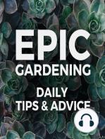 A Few Mulching Guidelines