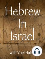 Hebrew In Israel   Torah Portion Beha'alotkha – Learn Torah