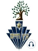 The Rambam - Rabbi, Doctor, Philosopher
