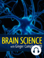BS 132 William Uttal on the limitations of brain imaging