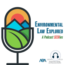 EPA National Enforcement Initiative: Andy Emerson of Holland and Knight LLP talks with Andrew Stewart of Vinson and Elkins LLP about the US EPA's recent announcement of new National Enforcement Initiatives for FY 2017–2019. Despite a declining resource base, the Agency has expanded the...