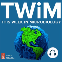 TWiM #165: Pumping Copper: The TWiM team discusses the use of copper on exercise weights to reduce bacterial burden, and the mechanism of antigenic variation by which a fungus that causes severe pneumonia escapes the immune system. Hosts: Vincent Racaniello, Elio Schaechter, ...