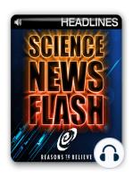 """Scientists Find Second, """"Hidden"""" Language in Human Genetic Code"""