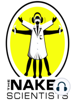 Naked Scientists Question and Answer Show