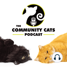 """Ep61 - Cameron Moore: """"When we offered spay/neuter to them, these caretakers would cry with happiness."""""""