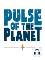Kelp Elevator - Pulse of the Planet 12Feb18