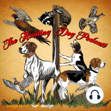 Old timers talk about their first dogs: Early hunt testing