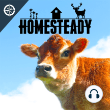 We Were Going to Quit Homesteading... Then This Happened...: Instead of quitting we had our biggest year of homesteading ever!