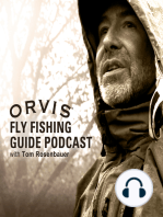 The Saltwater Fly Fishing in the Fall, Bait Fish Migration Podcast