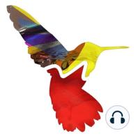 Random Movement Podcast #81: Featuring music from Calibre, Command Strange, Krakota, TC, MC Fats Collective, Break, Lynx, Total Science, Technimatic, Zero T, Paul T & Edward Oberon, Sinistarr, Ink, Need For Mirrors, Ben Soundscape & Joakuim, FD, Dramatic, Phase 2, Halogenix and more!