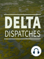 Advocating for Louisiana's Vanishing Paradise