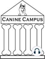 Canine Campus #2