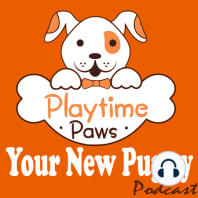 YNP #031: Reward Your Dog Without Treats: Dogs learns through repetition and reward. The easiest and most efficient way to reward your dog is by using treats. That is why they are the go-to for trainers and dog owners.Even though treats is the most popular way to reward your dog they are not...