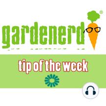 Best Part of the Pumpkin: The Gardenerd.com Tip of the Week for November 4, 2011