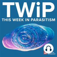 TWiP 176: Blood schmear: The TWiPpers of the bite fantastic solve the case of the Indian Man Who Hiked, and discuss the effects of schistosome soluble egg antigen on infection of lymphocytes with HIV-1. Hosts:, , and Subscribe (free):, ,, Links...