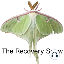 Josh R – Recovery Dharma – 323: Do you struggle with the God language in the 12 steps? Josh did. His inability to fully engage with the steps was probably a factor in his relapses. Josh talks with us about a couple of recovery programs based on Buddhist principles,