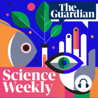 Carlo Rovelli on the weirdness of quantum mechanics (part one): It has been over a century since the groundwork of quantum physics was first formulated and yet the strange consequences of the theory still elude both scientists and philosophers. Why does light sometimes behave as a wave, and other times like a particle? Why does the outcome of an experiment apparently depend on whether the particles are being observed or not? In the first of two episodes, Ian Sample sits down with physicist Carlo Rovelli to discuss the strange consequences of quantum and the explanation he sets out in his new book, Helgoland