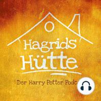 1.11 - Nicholas Flame-Al, ein weiteres Quidditch Spiel und der raubtierhafte Snape (Harry Potter und der Stein der Weisen, Kapitel 13)