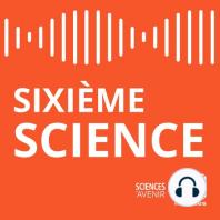 Sixieme Science #10 - Sur les traces de l'arche d'alliance: Indiana Jones reprend du service!