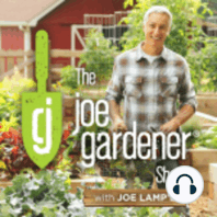 210-Non-Negotiables for Summer Success in the Garden: With all of the responsibilities we have in our daily lives, the time that we can dedicate to tending to and enjoying our garden is often all too short. On this week's podcast, I share my tips for making precious gardening time more productive and...