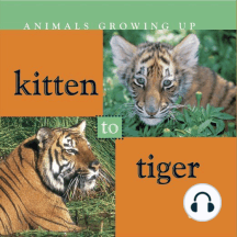 Kitten to Tiger: Life Science - Animals Growing Up
