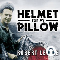 Helmet for My Pillow