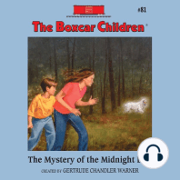 The Mystery of the Midnight Dog