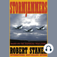 Stormjammers