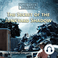 The Secret of the Junkyard Shadow