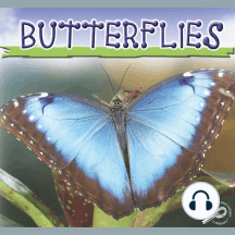 Butterflies: Life Science - Insects Discovery Library
