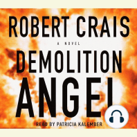 Demolition Angel