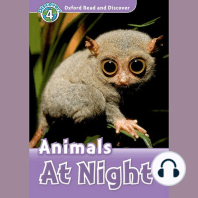 Animals at Night