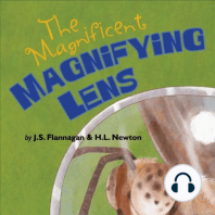 The Magnificent Magnifying Lens