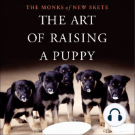 The Art of Raising a Puppy