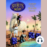 Secrets of Droon, Book 2, The