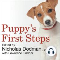 Puppy's First Steps