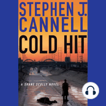 Cold Hit: A Shane Scully Novel