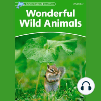 Wonderful Wild Animals