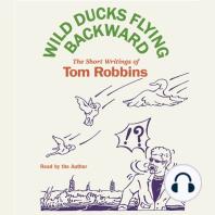 Wild Ducks Flying Backward