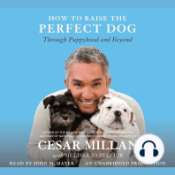 How to Raise the Perfect Dog